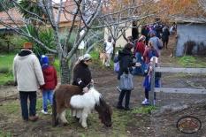Villaggio di Natale in Fattoria 2016-3
