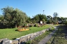 Parco-7